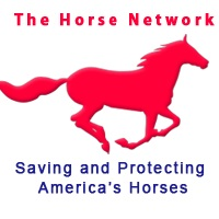The Horse Network