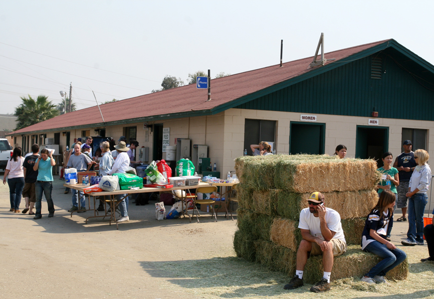 Del Mar Fairgrounds Horse Rescue during the San Diego fires.